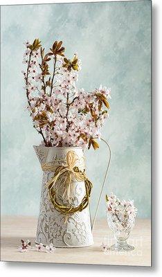 Springtime Blossom Metal Print by Amanda Elwell