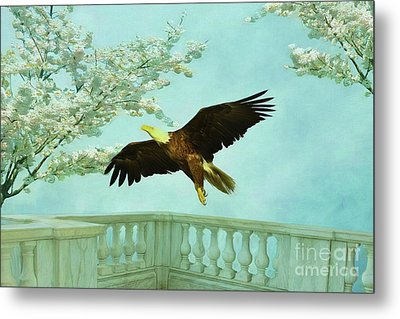 Springtime Eagle Metal Print by Deborah Benoit