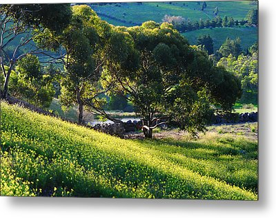 Springtime Glory With Blue Hills Metal Print