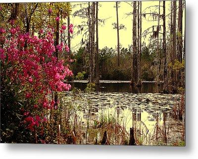 Springtime In The Swamp Metal Print by Susanne Van Hulst