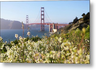 Metal Print featuring the photograph Springtime On The Bay by Everet Regal