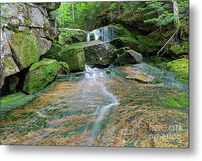 Spur Brook - Randolph New Hampshire Metal Print by Erin Paul Donovan