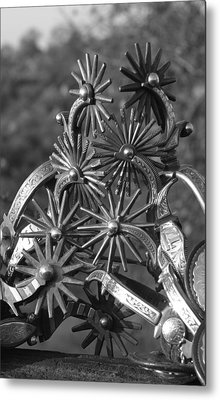 Spur Collection Metal Print