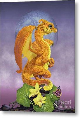 Squash Dragon Metal Print by Stanley Morrison