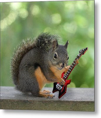 Squirrel Playing Electric Guitar Metal Print