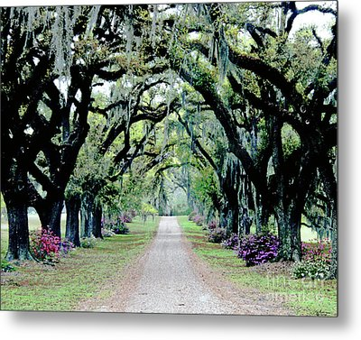 St Francisville Plantation Metal Print