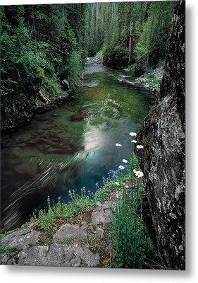 St Joe River Metal Print by Leland D Howard