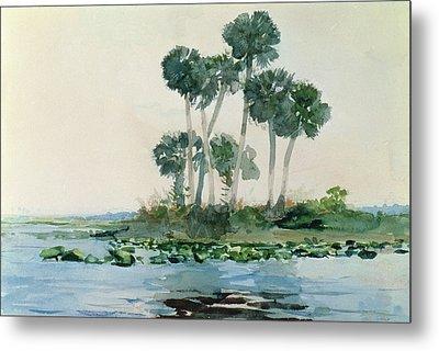 St John's River Florida Metal Print by Winslow Homer