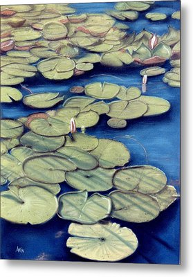 St. Marks Waterlilies Metal Print