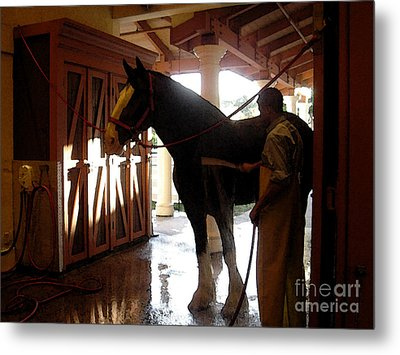 Stable Groom - 1 Metal Print