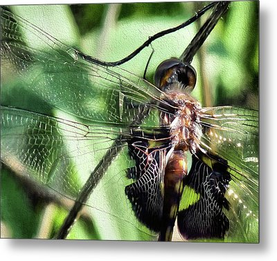 Metal Print featuring the digital art Stained Glass Dragonfly by JC Findley