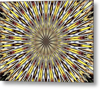 Metal Print featuring the photograph Stained Glass Kaleidoscope 22 by Rose Santuci-Sofranko