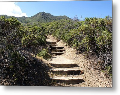 Stairway To Heaven On Mt Tamalpais Metal Print by Ben Upham III