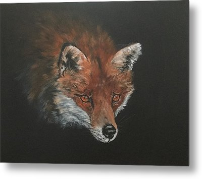 Red Fox In Stalking Mode Metal Print