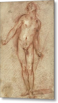 Standing Male Nude Metal Print
