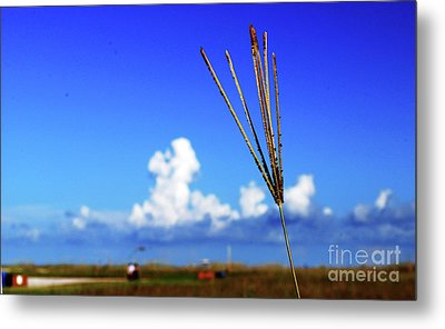 Metal Print featuring the photograph Standing Tall by Gary Wonning