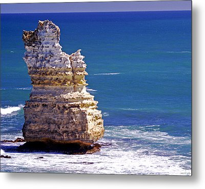 Standing Tall Metal Print by Holly Kempe