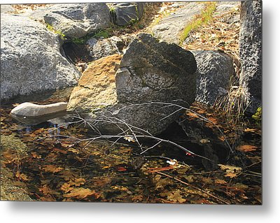 Metal Print featuring the photograph Stanislaus Rocks Spring by Larry Darnell