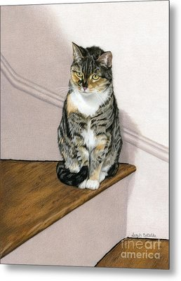 Stanzie Cat Metal Print by Sarah Batalka