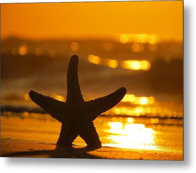 Metal Print featuring the photograph Star Bokeh by Nikki McInnes