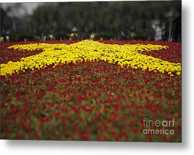 Star Of Vietnam Metal Print