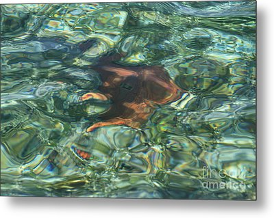 Metal Print featuring the photograph Starfish Abstract by Edward R Wisell