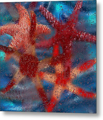 Starfish Metal Print by Jack Zulli