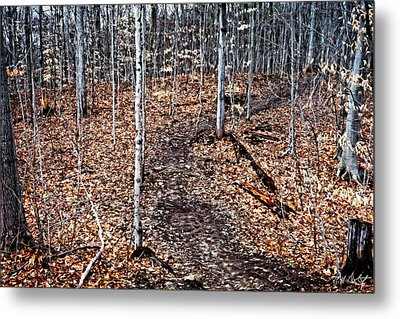 Starkey Hill Path Metal Print by Phill Doherty