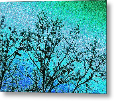 Starlings Metal Print by Will Borden