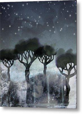 Starlit Marsh Metal Print by Varpu Kronholm
