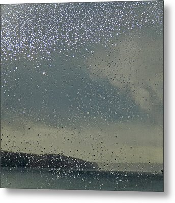 Metal Print featuring the photograph Starry Day by Sally Banfill