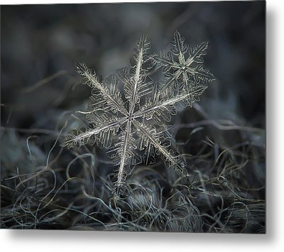 Stars In My Pocket Like Grains Of Sand - Grey Version Metal Print by Alexey Kljatov