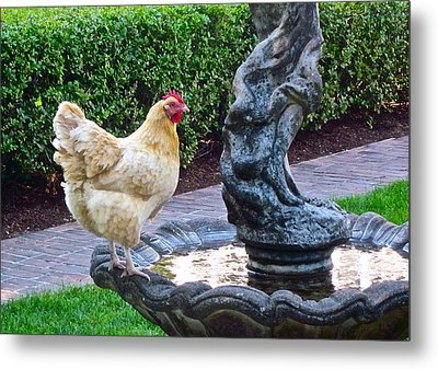 Statuesque Metal Print by Gwyn Newcombe