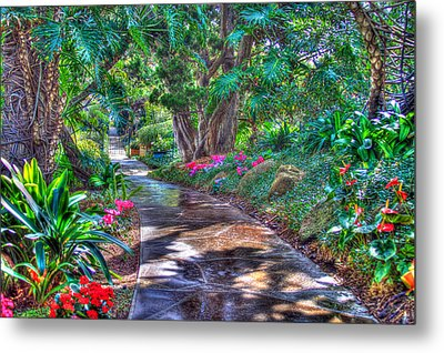 Metal Print featuring the photograph Stay On Your Path by TC Morgan