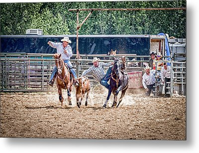 Metal Print featuring the photograph Steer Wrestling With An Audience by Darcy Michaelchuk