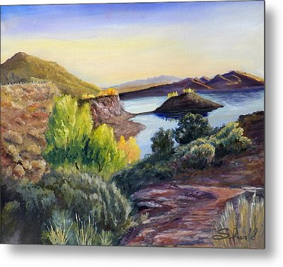 Metal Print featuring the painting Steinaker by Sherril Porter
