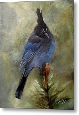 Stellar Of A Bird Metal Print by Mary St Peter
