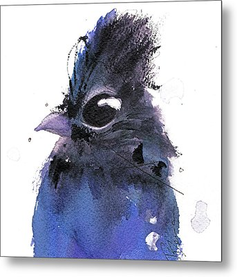 Metal Print featuring the painting Steller Jay by Dawn Derman