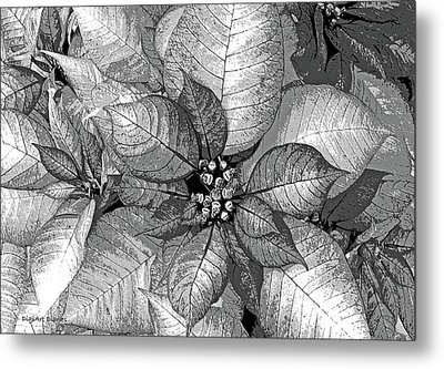 Sterling Shimmer Metal Print by DigiArt Diaries by Vicky B Fuller