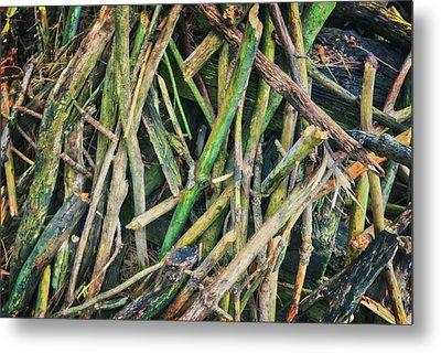 Stick Pile At Retzer Nature Center Metal Print by Jennifer Rondinelli Reilly - Fine Art Photography