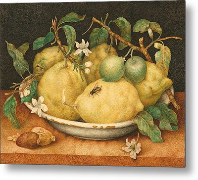 Still Life With A Bowl Of Citrons Metal Print