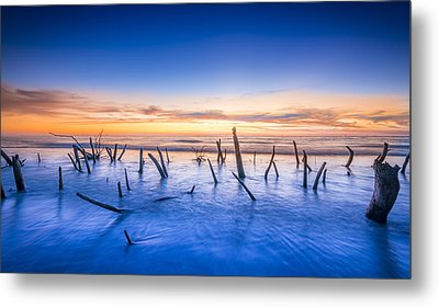 Still Standing Metal Print by Marvin Spates