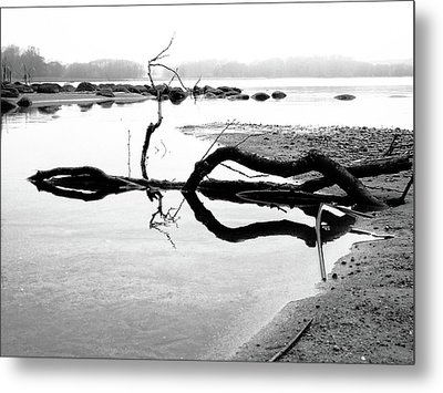 Stillness Metal Print by Karen Stahlros