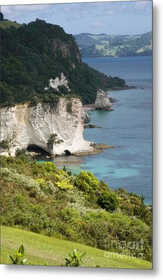 Stingray Cove Metal Print by Himani - Printscapes