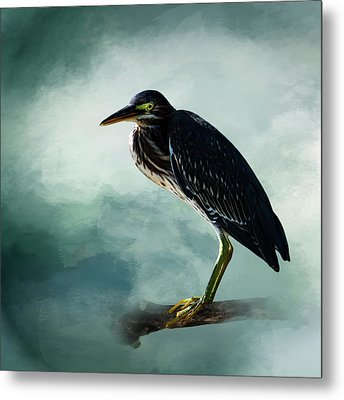 Stink Eye Metal Print by Cyndy Doty