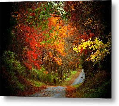 Stone Bridge Road Metal Print by Joyce Kimble Smith