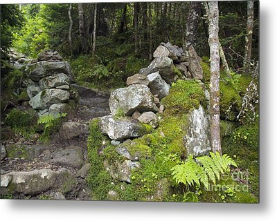 Stone Gate - Edmands Path - White Mountains New Hampshire  Metal Print by Erin Paul Donovan