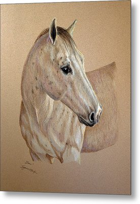 Metal Print featuring the drawing Stone by Suzanne McKee