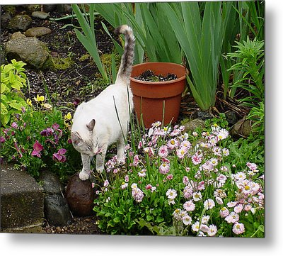 Stop To Smell Flowers Metal Print