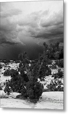 Storm Over Sand Bench Utah Metal Print by John Hermann